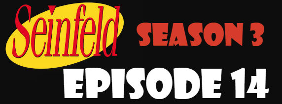 Seinfeld Season 3 Episode 14 TV Series